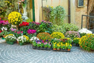 strada con fiori