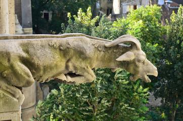 Gargoyle of the French church