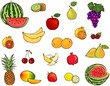 Set of vector fruits and berries