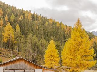 Zernez, Schweizer Alpen, Ofenpass, Passstrasse, Engadin