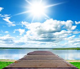 Contemplating the Sea Sunny Serenity