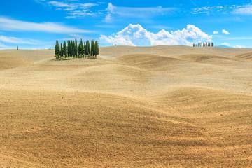 Beautiful Tuscany landscape with cypress trees near Siena,Italy