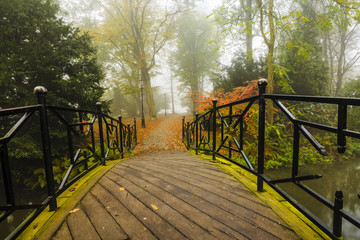 Autumn - bridge in autumn misty park