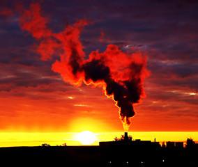Smoke rising into the sky