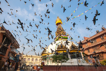 Wisdom eyes, Nepal