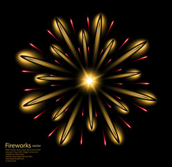 fireworks gold flower yellow vector