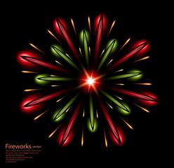 fireworks flower red green vector