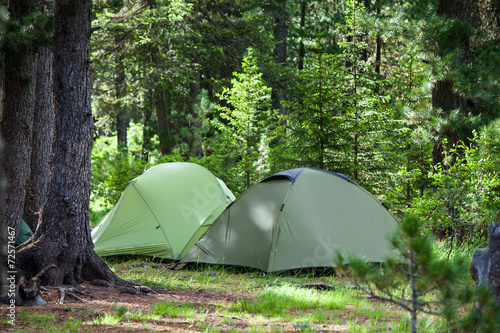 Greent tourist tents in forest at campsite © Maygutyak
