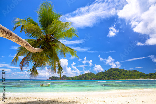 canvas print picture Beautiful palm beach in Mahe Island, Seychelles