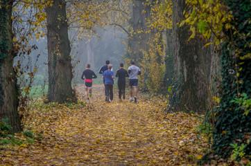 Jogger auf einer Allee in einem Park bei Nebel
