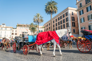 Horses and Carriages Piazza di Spagna, Rome Italy