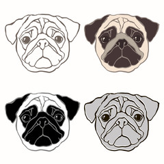Vector set of  pug's face. Hand-drawn vector illustration. Sketc