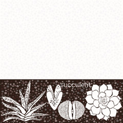 Background with succulents. Floristic composition. Vector illust