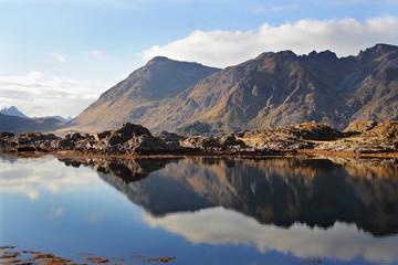 Specular Lofotens fjord
