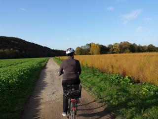 Radfahrerin auf Weg in Herbstlandschaft