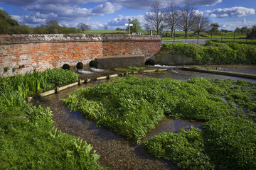 Water Cress Farm