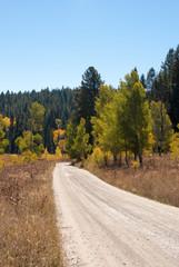 Dirt road in Grand Tetons National Park