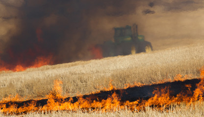 Agricultural Farmers Burn Plant Stalks Harvest Fire Tractor