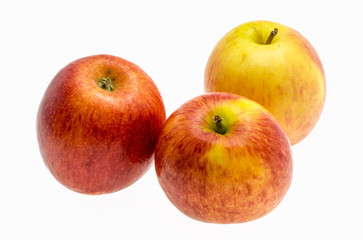 gala apples over white background