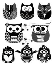 Vector Owl Black color