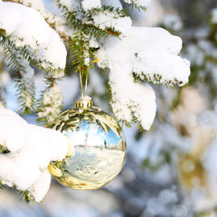 Gold Christmas Ball on Christmas tree branch covered with Snow.