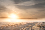 Frosty Sunrise. Landscape photo.