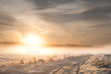 Frosty Sunrise. Landscape photo.