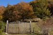 Cancello nel bosco
