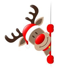 Rudolph Banner Diagonal