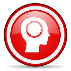 head web icon