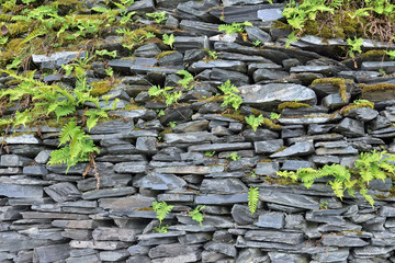 Typical wall in village built from shiste stones