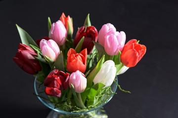 Different tulips in glass vase on dark background