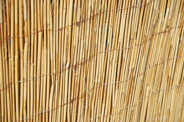 Shallow DOF image of cane fence in village