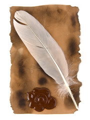 feather and old paper