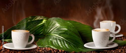Cappuccino - Caffè con Latte