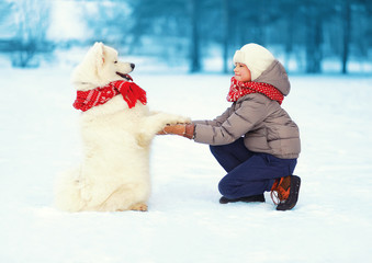 Christmas, winter and people concept - happy boy and dog