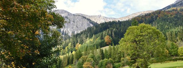 landschaft mit berg