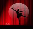 Постер, плакат: Девушка танцующая балет