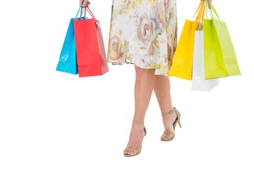 Elegant woman holding shopping bag
