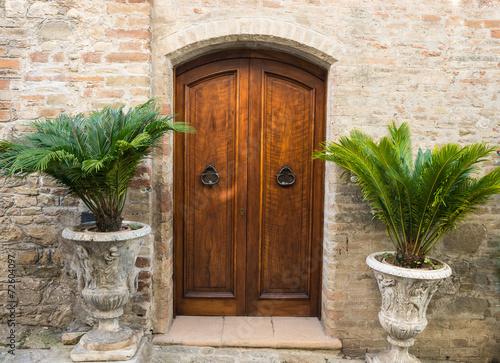 Fototapeta Elegante porta di legno