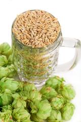 mug with barley and hop