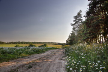 Landscape situated near Moscow