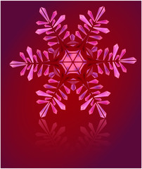 pink snowflake carved out of ice crystals on a red background
