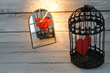 Captive heart in birdcage reflected in a mirror