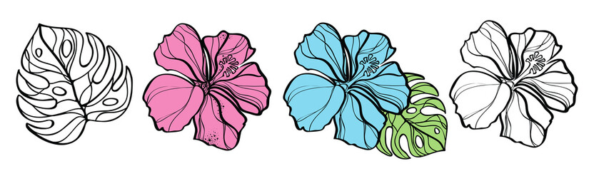 Set of flowers hibiscuses isolated on white, vector illustration