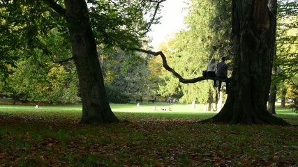 Happy young couple on branch tree - Autumn park - fallen leaves