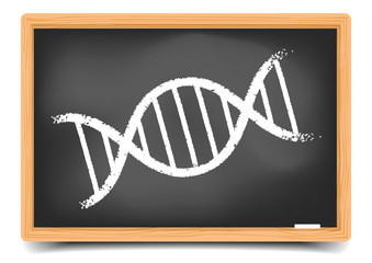 Blackboard DNA