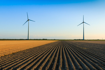 Windmills at farmer fields
