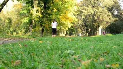 Autumn park (trees) - woman runs (sport) - grass - sunny