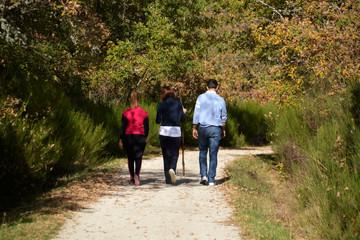 excursion por el bosque en otoño